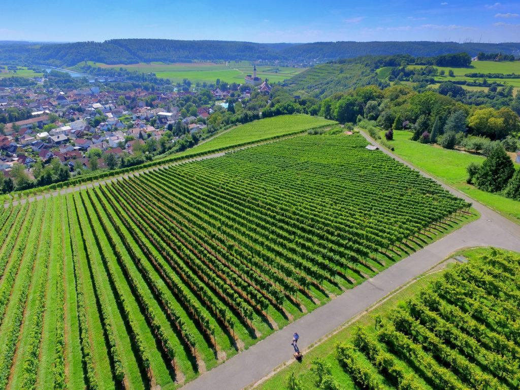 Surveillance viticole et agricole